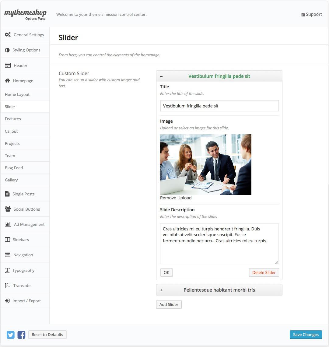 Business Slider Settings